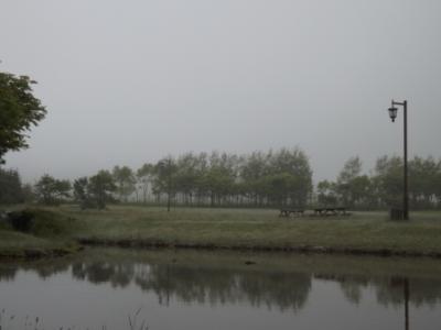 DSCF3498.jpg