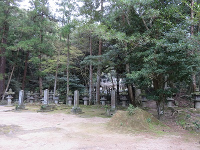 IMG_1033 墓所