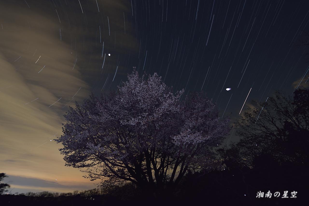 20140404_夜桜A