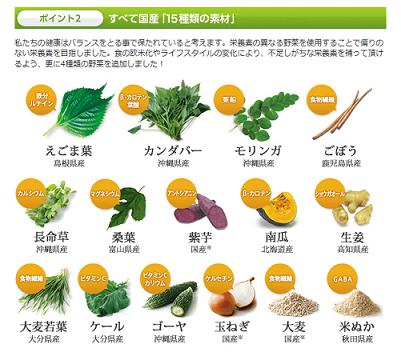 15種類の栄養素