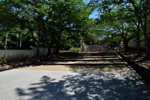 御根小屋跡入り口前の並木道
