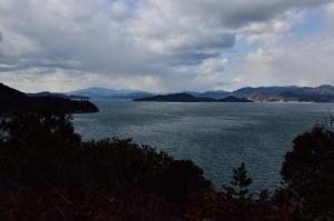 山道から見た海