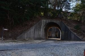 発電場前のトンネル