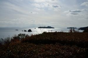 であいの館前の海