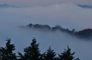 霧の海に沈んでいく備中松山城