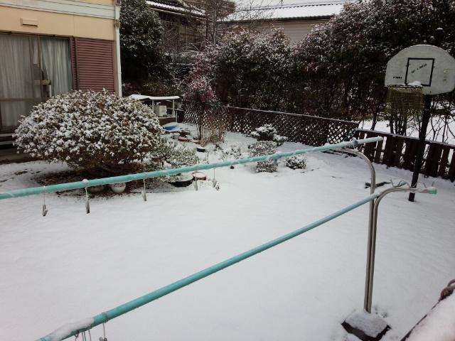 3日雪01
