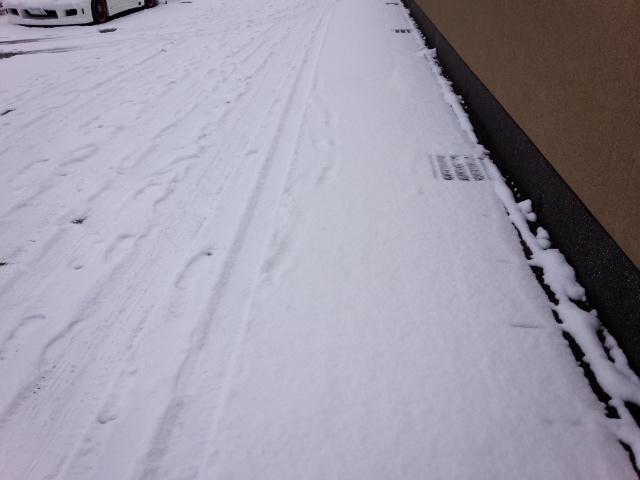3日雪02
