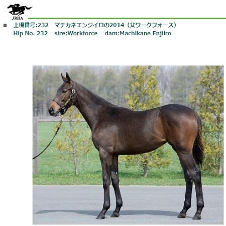 Machikane Enjiiro2014-1