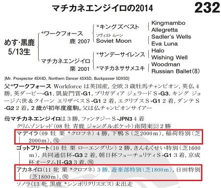 Machikane Enjiiro2014-2
