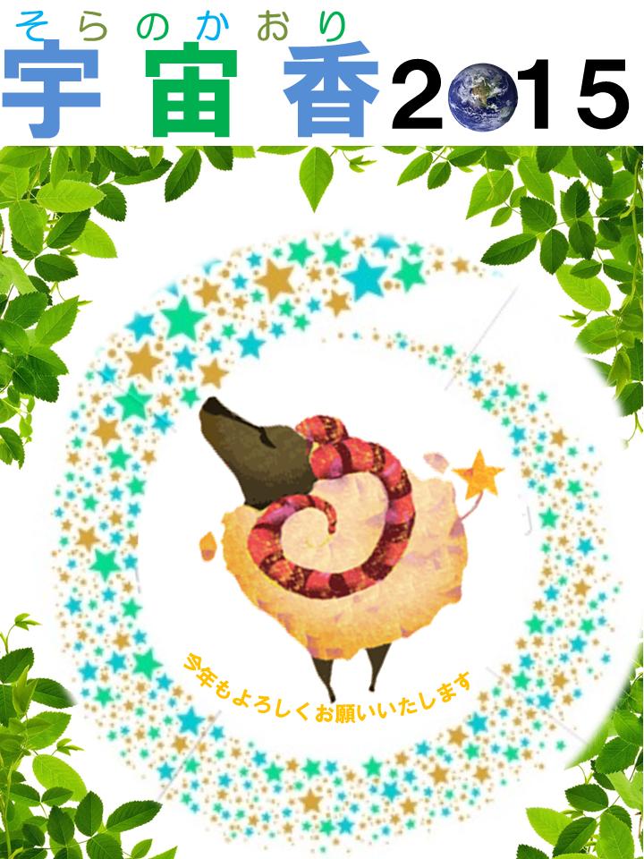 2015宇宙香
