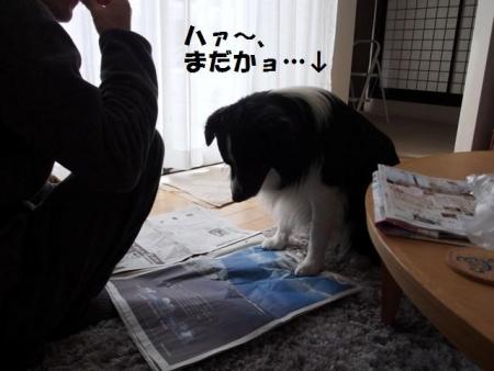 20150311_04.jpg