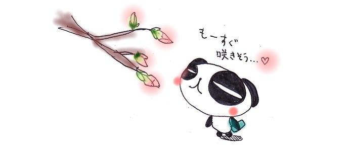 もーすぐ咲くかな