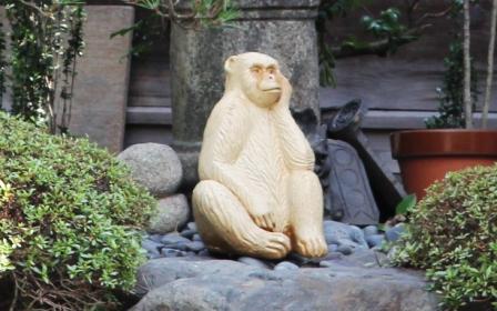 正行院の白猿_H26.07.15撮影