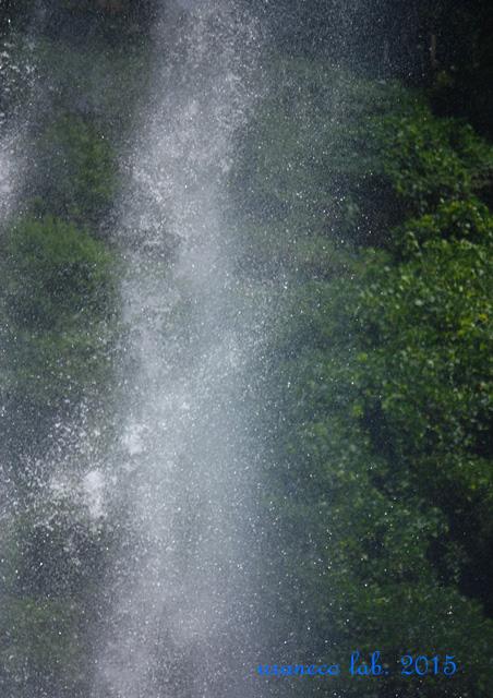 7月9日waterfall7