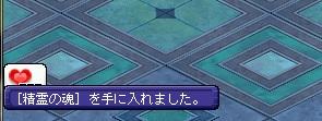 20150606_seireitamashi.jpg