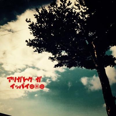 20141228064134d33.jpg