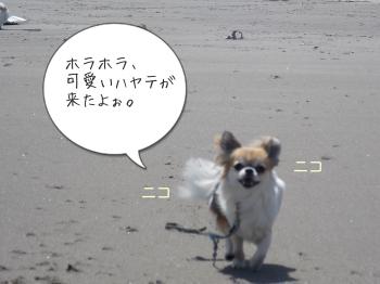 201505012_12.jpg