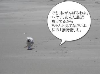 201505012_15.jpg