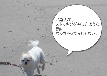 201505012_16.png