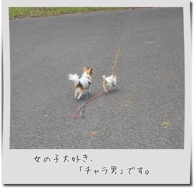201505021_5.jpg