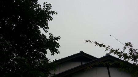 150707_天候
