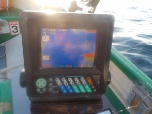 DSCN0232 - 魚探に反応なし