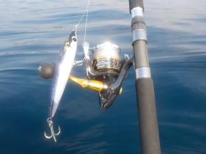 DSCN0339 - これで釣る予定