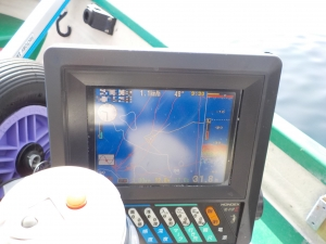 DSCN0341 - 9時半水温17度を突破