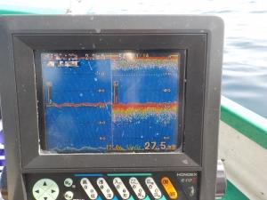 DSCN0345 - 18度目前にせまる、水中浮遊物多し