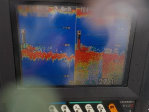 DSCN0586 - 16.6度 水温低い