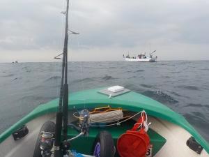 DSCN0593 - 7時半 遊漁船もきた