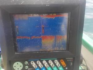 DSCN0632 - 岸の側のヒラメポイントは水温16度台で低いね