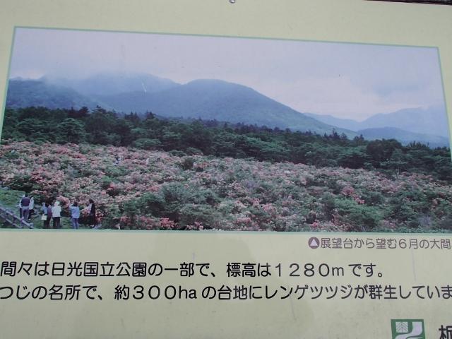 P5051105 (640x480)