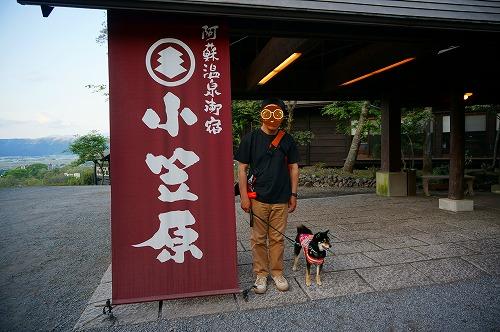 くまもと (29)