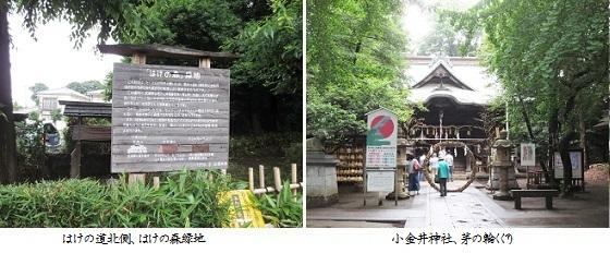 b0627-6b はけの森-小金井神社