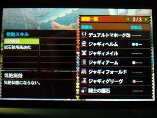 MH4G_04.jpg