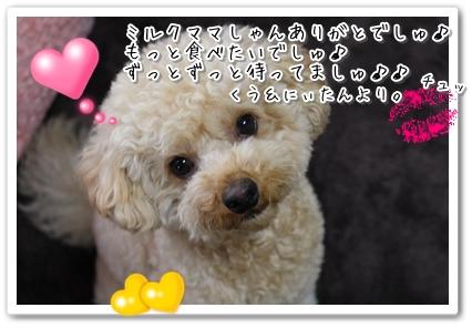 IMG_4122.jpg