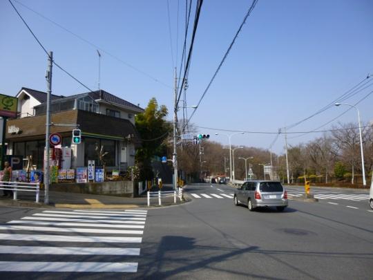 15_03_22-03tamanosaka.jpg