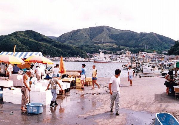③賑わう漁港
