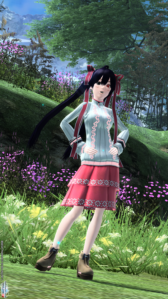 pso20150302_160657_017.png