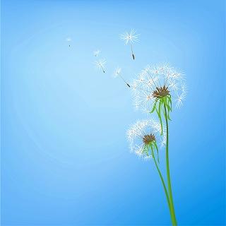 s-flower-back1045.jpg