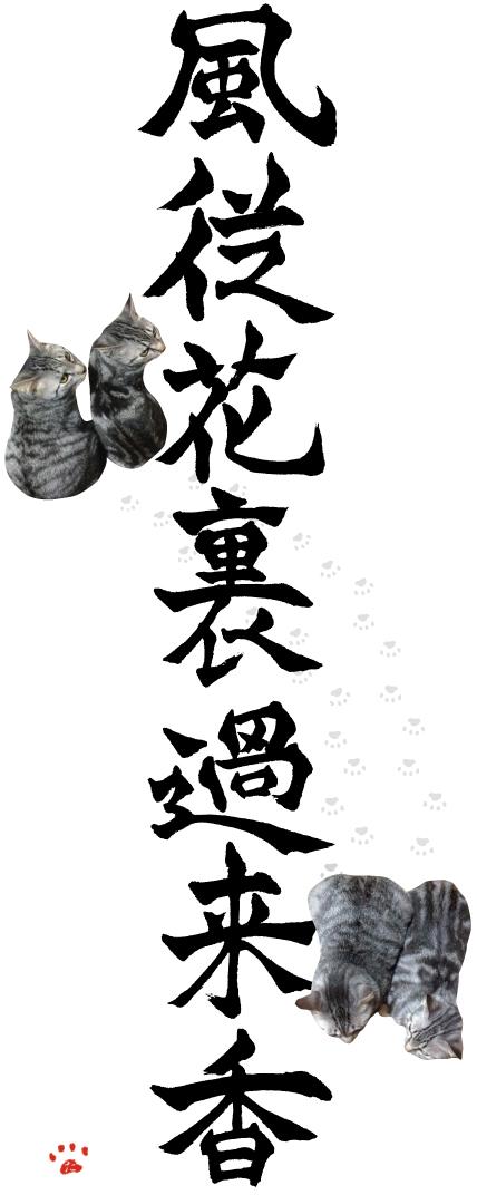 zen20150109_風従花裏過来香