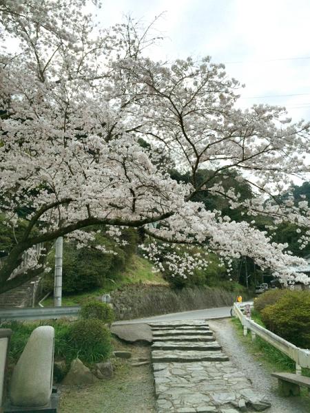 150331_07高樹神社横