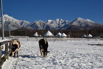 DSC_0055八ヶ岳 (2)