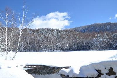 雪の御射鹿池 (1)