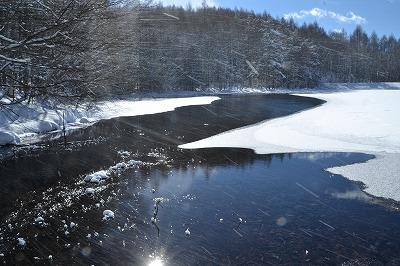 雪の御射鹿池 (2)