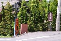 朝倉城址 (1)