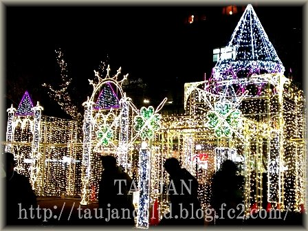 TAUJAN 2014 クリスマス ドリミネーション