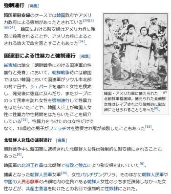 wiki韓国軍慰安婦11