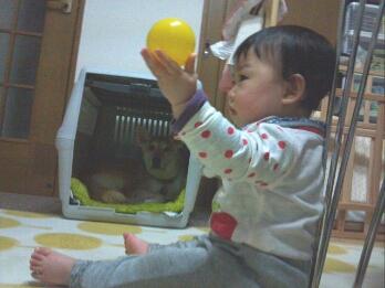 fc2_2015-03-29_20-39-48-865.jpg